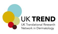 uk-trend logo